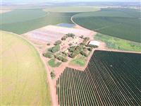 Belíssima fazenda paracatu a melhor da região