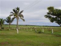 Fazenda de 8.000 hectares pra pecuaria e agricultura no mato grosso