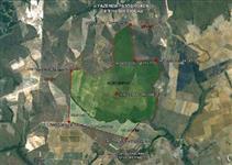 Fazenda Produtora de Grãos - 14.167 ha - MT