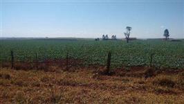 Fazenda de 205 alqueires na região de bauru