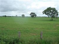 Fazenda em Água Boa no Mato Grosso com 3.106ha (37 km² de área)