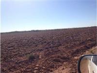 Fazenda Soja 5.350 Hec. Nova Brasilandia - MT