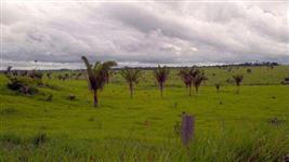 Fazenda em Juara MT - 1261 Alqueires Escriturada