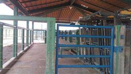Fazenda posse go espetacular, própria para pecuária