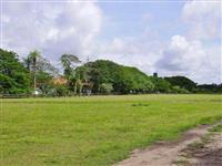 Fazenda no Paiaguás Pantanal -MS!