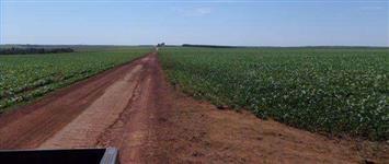 Linda Fazenda em Cristalina-GO 3500 hectares