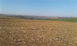 Linda Fazenda Uberaba MG 958 hectares