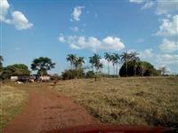 Linda Fazenda uberlandia 60 hectares