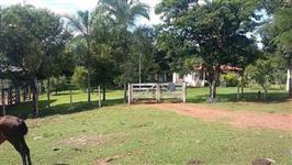 Linda Fazenda uberlandia 46 hectares