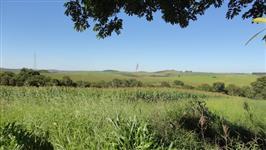 Linda Fazenda sacramento mg 290 hectares