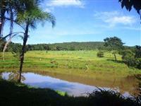 Linda fazenda figueiropolis to