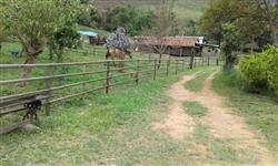 Linda fazenda Belmiro braga mg