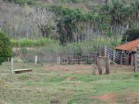 Linda fazenda campinas verde mg 174 alqueires
