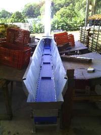 Esteira Transportadora Descarte Casca De Palmito/Palmeira
