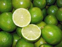 Fornecedor de Limão Tahiti Beneficiado. Lavado, Secado e encerado