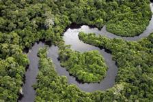 Compensação Ambiental no bioma Amazônico