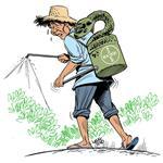 Sempra-Herbicida extermina a tiririca definitivamente Produto Original