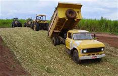Vende-se silagem de milho a granel