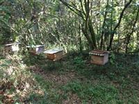 Vendo mel atacado