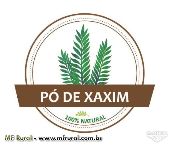 PÓ DE XAXIM