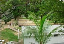 Hotel Fazenda em Conceição de Macabu-RJ