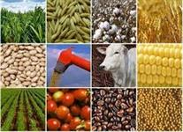 Crédito para Agronegócio e  Agroindústria