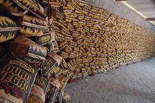 Carvão Ouro Negro 100% de madeira de eucalipto, provenientes de reflorestamento