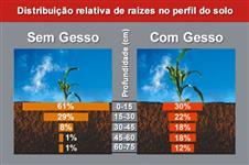 Gesso líquido - Gesso agrícola - GESSO SOLUÇÃO VERDADEIRA EM MICRO PARTÍCULAS
