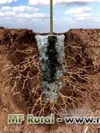 GEL HIDROGEL Condicionador de Solo Absorvente de Água cada uma grama retem 300ml