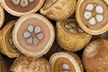 Óleo/Azeite do coco babaçu