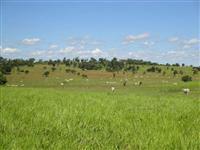 Credito Imobiliário Rural