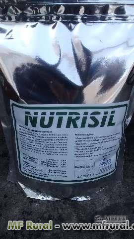 SILICIO  NUTRISIL  FUNGICIDA TOTALMENTE  ORGANICO