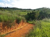 Fazenda com 290,0ha em Raul Soares/MG