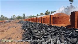 carvão Furlan