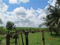 Sítio em Zona Rural de Dracena - 25 alqueires