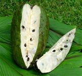 Frutas Exóticas e Nacionais
