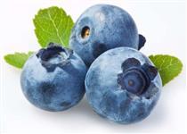 Fruta Congelada - Mirtillo, Physalis, Amora, Framboesa
