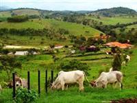 Adquira sua Chácara, Sitio, Fazenda com juros 0