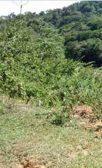 Vendo Sítio em São Luiz do Paraitinga-SP