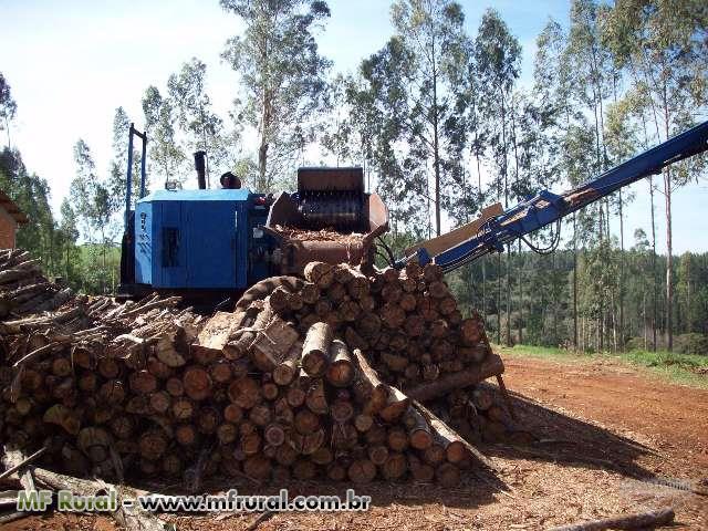 Picador florestal Bruno