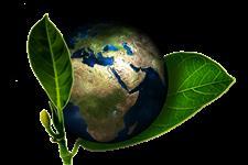 Consultoria Ambiental para o meio Rural