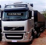 Caminhão  Volvo FH 460  ano 15