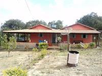 Fazenda Presidente Olegario 47 hectares