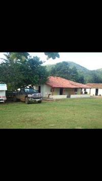Fazenda Palmeiropolis  TO  300 Alqueires