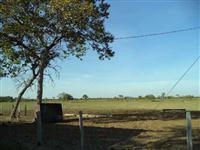 FAZENDA EM ARAGUAIANA MT