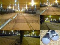 Lâmpada LED Bulbo 5w Branca 80% mais econômica K1461