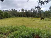 Vendo área de terra no bairro Cerrado da Roseira, Zona Rural do Município de Jaguariaíva - PR.