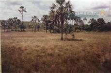 Fazenda rural à venda, Cocos - Pecuária e Agricultura