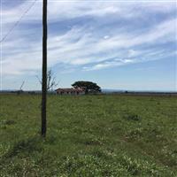 Fazenda à venda, Águas Claras, Viamão.