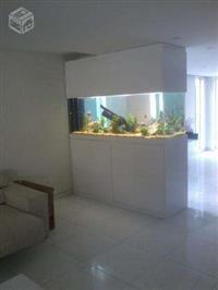 Montagem de lagos e aquários